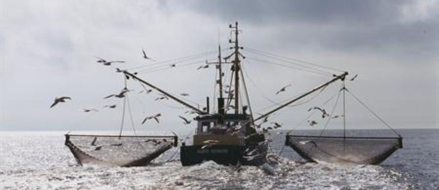 Visserij Nieuws