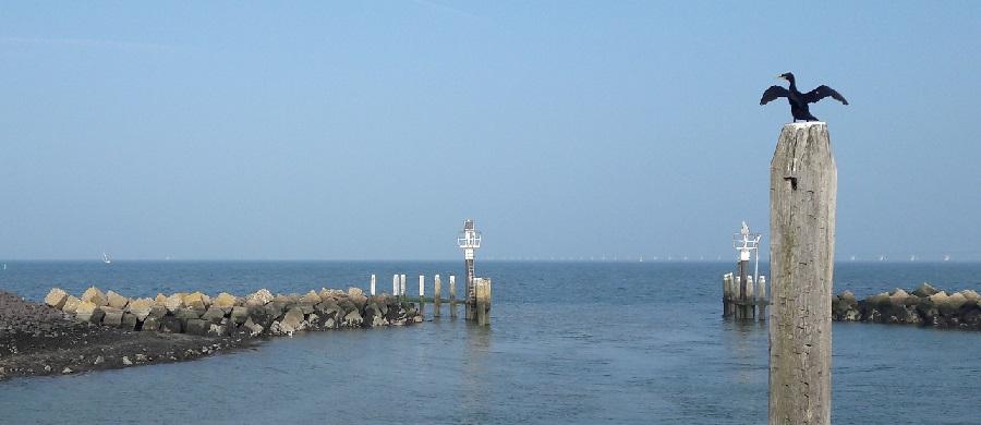 zeeuwse havens 390x900