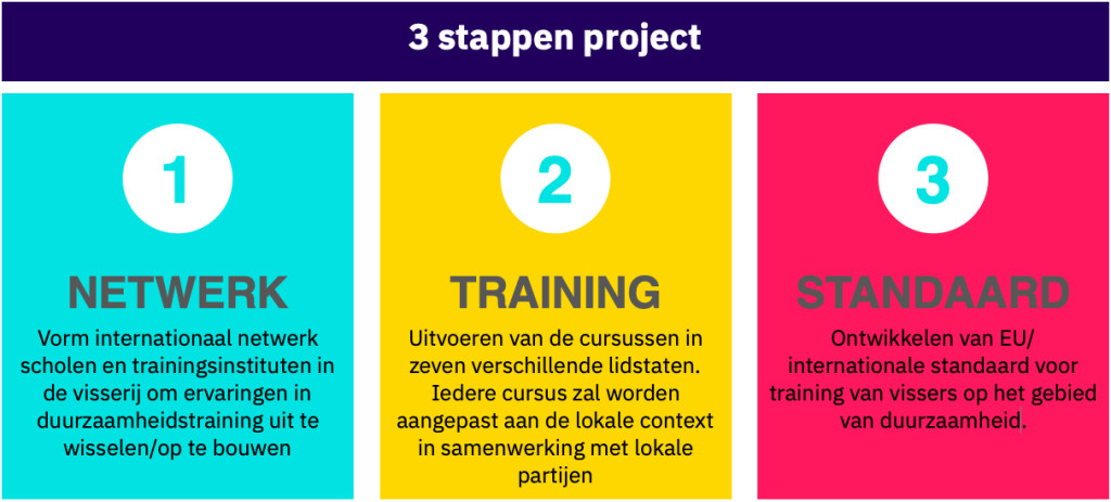 5 Stappen project